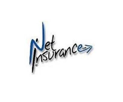 Net Insurance Logo buono